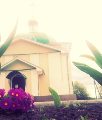 «Цветы — остатки рая на земле…» Часть I. Весна.