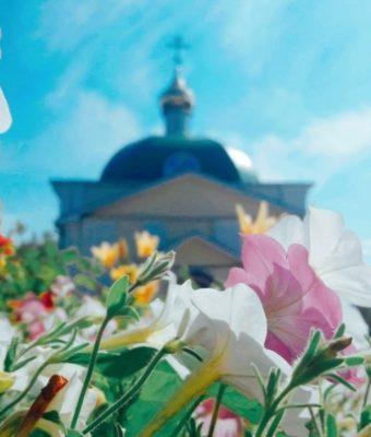 «Цветы — остатки рая на земле…» Часть II. Лето.